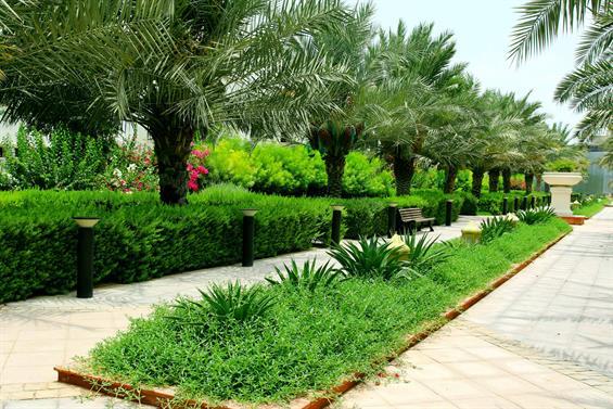 Bloom Gardens, Corniche, Abu Dhabi  Gallery Image 7